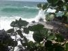 Redfrog Beach