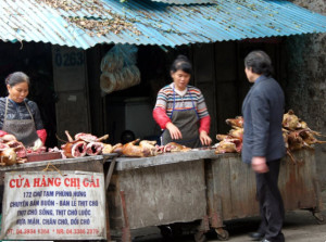selling dog meat