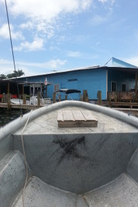 Bocas Del Toro Shores
