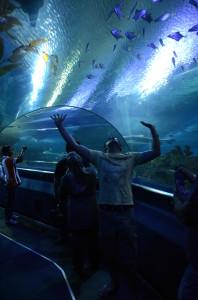 Kuala Lumpur Aquarium